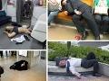 FOTO spitých Japoncov je hitom: Najprv slušáci, potom na šrot!