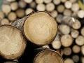 Ľuďom nasľuboval drevo na kúrenie, obral ich o peniaze: Teraz mu hrozí vysoký trest