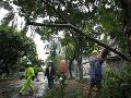 Tajfún Matmo bičoval Taiwan intenzívnymi dažďami a silným vetrom