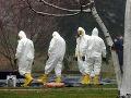 V kauze nákazy antraxom v Maďarsku sú štyria podozriví