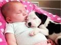 Bábätko a šteniatko - najrozkošnejšie kamarátstvo