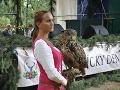 Poľovnícke tradície na Záhorí: Jeden deň venovaný obľúbenej slovenskej zábave