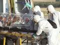 Ministerstvo opäť varuje: Necestujte do do štátov, kde zabíja ebola