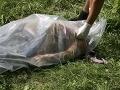 Policajt narazil do chodca, ktorý ležal na zemi: Muž zraneniam podľahol