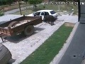 Rus Slovákom ukázal, ako sa kradnú kravy: Neuveríte, kam ju napchal!