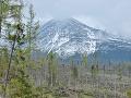 Nekompromisný prírodný živel v tatranských lesoch: Najviac vyvrátených stromov je na Orave