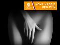 Humor a sex na predvolebných bilbordoch: Porovnali sme českú a slovenskú kampaň, kto je suchár!