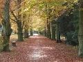 TIP na jesennú prechádzku u nás doma - Kam na Slovensku?