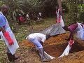 Prvý Talian sa nakazil ebolou: Lekára pracujúceho v Sierra Leone prevážajú do Ríma