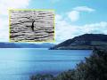 Legenda Loch Ness ožíva: V Škótsku našli pozostatky prastarého monštra na FOTO!