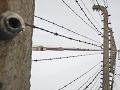 Mladí Portugalci sa podpísali na bránu Auschwitzu: Poľský súd ich odsúdil do väzenia