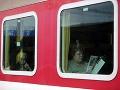 Počasie prekazilo plány stovkám cestujúcich, mrazivú noc museli prečkať vo vlaku