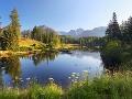 V Tatrách potvrdili zaujímavý objav: Našli sa unikátne rastliny z doby ľadovej