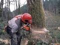 Drevorubača pri Gelnici zavalil strom, zasahovať musel vrtuľník