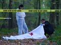 Horor po sexfestivale v Británii: V lese našli telo mŕtveho muža a bezvládnu ženu