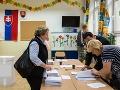 Volebný servis pre Slovákov