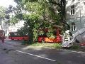 Dráma v Bratislave: FOTO Na autobus plný ľudí spadol strom