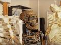 Vedci rozlúštili ďalšiu evolučnú hádanku: Prví pravekí ľudia počuli úplne inak