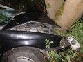 FOTO Nešťastie na ceste: Vodič (†45) sa pri Ružomberku zrazil so srnou, neprežil