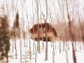 Spomienky slovenského policajta na zimu 1982: Našli sme chalúpku ako z rozprávky a v nej...