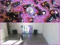 FOTO Umelecké diela z výstavy skončili v kontajneri: Všetko to začalo večernou párty!