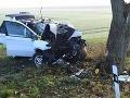 FOTO Tragédia po haloweenskej noci: Piati kamaráti na BMW narazili do stromu, Peter (†20) neprežil