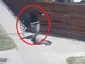 VIDEO Brutálny útok pred očami chodcov: Muž napadol priateľku, zbitú ženu majú všetci v päte