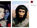 Niektorí z divákov Kláru Vytiskovú prirovnal dokonca k šimpanzovi z Planéty opíc.