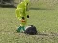 VIDEO Na koziu farmu spadol neznámy objekt: Farmári s úžasom sledovali UFO