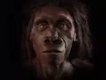 Šesť miliónov rokov evolúcie na nás zanechalo stopu