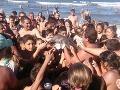 Delfínie mláďatko na FOTO zomrelo kvôli selfie: Turisti ho utrápili na smrť