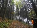 Holanďania si vybrali na turistiku Slovenský raj: Zišli z chodníka a zablúdili