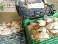 Maďarskí úradníci objavili viac ako dve tony kačacieho mäsa, ktoré bolo určené na predaj ako husacia pečeň