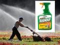 Zdá sa, že účinným postrekom proti burinám odzvonilo: EÚ stopla herbicídu licenciu
