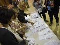 Obávajú sa hackerov: Holanďania budú výsledky volieb sčítavať radšej ručne