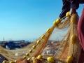 Mala to byť obyčajná rybačka, no teraz je všetko inak: Rybári objavili v sieti totálnu BOMBU