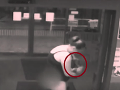 VIDEO Žena porodila za minútu, partner medzitým parkoval: Prepáč, kričala vo dverách nemocnice!