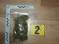 Policajti chytili v Čadci dvoch mladíkov (19, 25): FOTO Výroba a obchodovanie s drogami