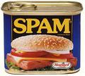 SPAM (Nevyžiadaná pošta, falošné