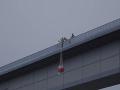 Stačili sekundy a nepripravenosť by ho zabila: VIDEO Dráma pri skoku z mosta. Hrdinstvo inštruktora