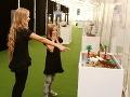 Legendárne lego je pripravené na svojich priaznivcov: FOTO Výstava, ktorá poteší aj dospelých