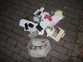 Drzý zlodej ukradol Češke kabelku na FOTO: Netušil, aké veľké tajomstvo ukrýva a odhodil ju!