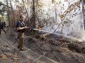 VIDEO USA dopláca na vyschnutú zem: Juhovýchod štátov horí, hospitalizovali stovky ľudí