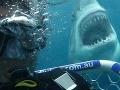 Dovolenkári, pozor na Stredozemné more! Zoznam krajín, kde sa útoky žralokov najčastejšie končili smrťou