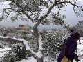 Zimné počasie sprevádzané hustým snežením a nezvyčajnými mrazmi postihlo v noci nadnes aj grécke hlavné mesto Atény.