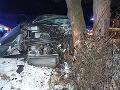 FOTO Dopravná nehoda v Považskom Podhradí: Zranení dvaja ľudia po náraze do stromu