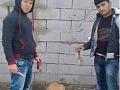 Poburujúce FOTO, ktoré sa šíri internetom: Mladíci pózujú s odrezanými ušami skrvaveného psíka