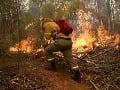 VIDEO Čile sužujú najhoršie požiare za poslednú dobu: Šíria sa rýchlo a ničia všetko!