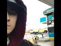 Mladík chcel pomôcť túlavému psovi: Až dokým si neprečítal ODKAZ na jeho krku