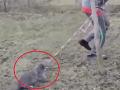 Prázdniny u babičky pri Prievidzi sa zvrhli na odpornú zábavu: Video týrania úbohej mačky